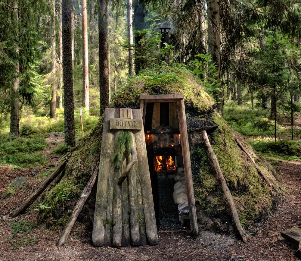 A hut in the middle of the forest