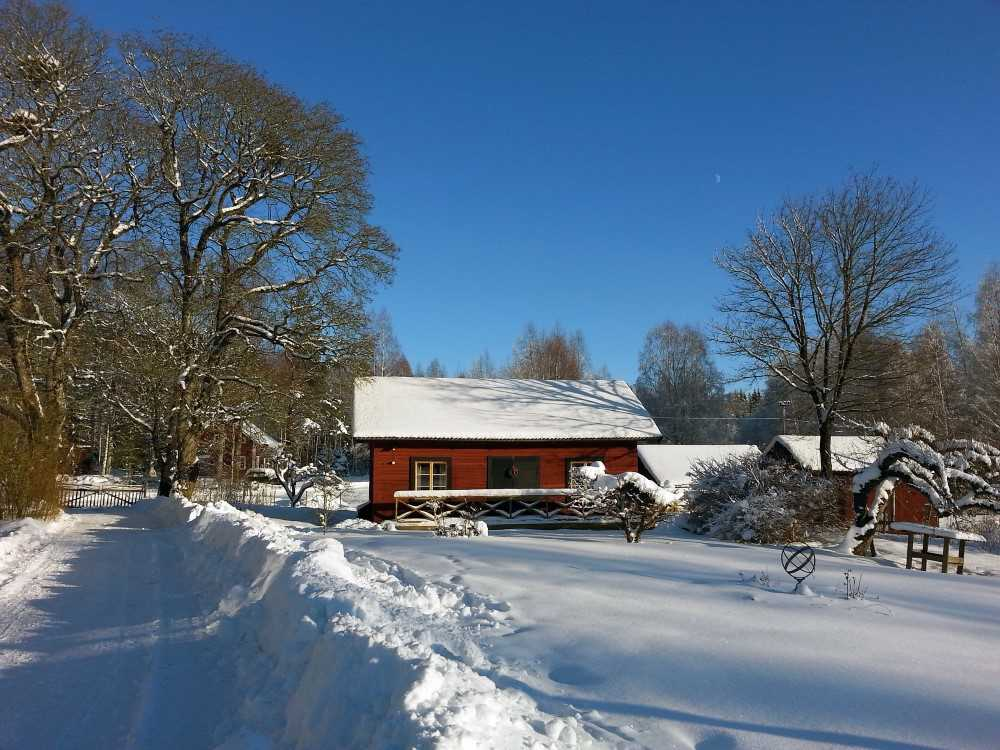 Ulvsbomuren Wildlife and lodging during wintertime