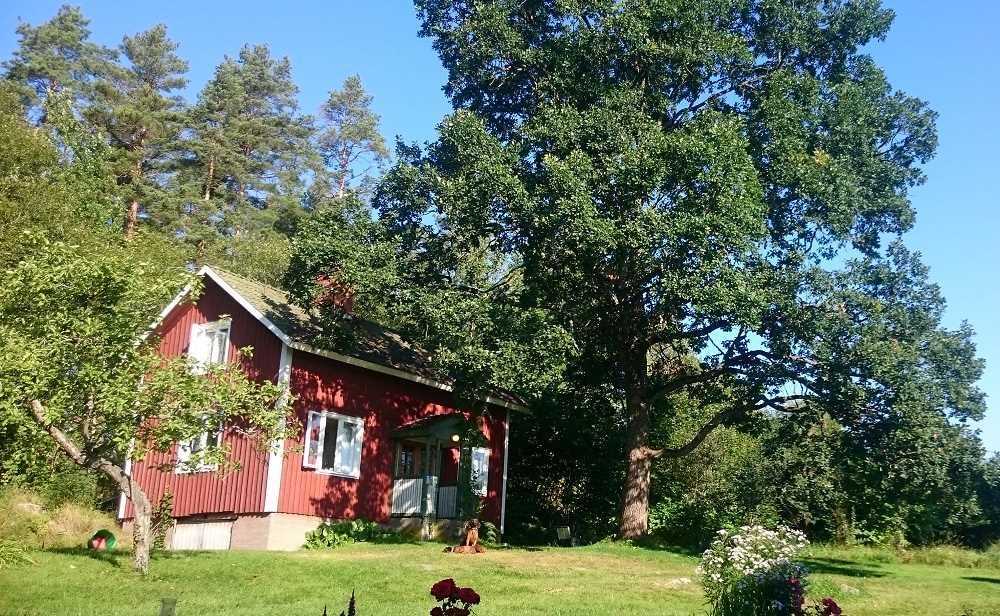 A cottage you can rent at Fallänge B&B